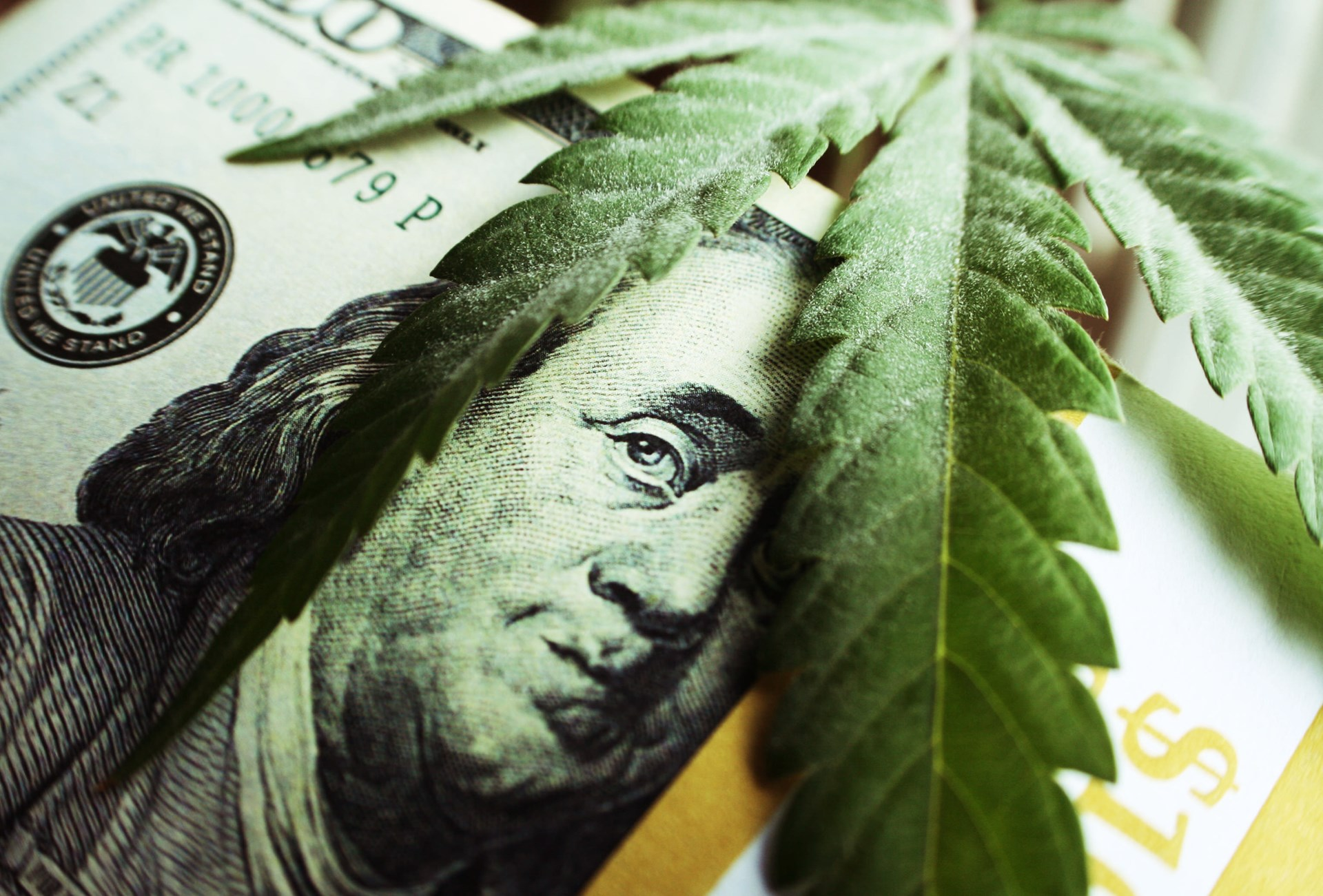 Marijuana's Growing Economy - Legalize It, Tax It.