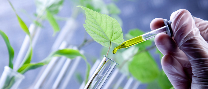 """The Biotechnology Industry is """"Growing"""" and Can Qualify for Significant R&D Tax Credits"""
